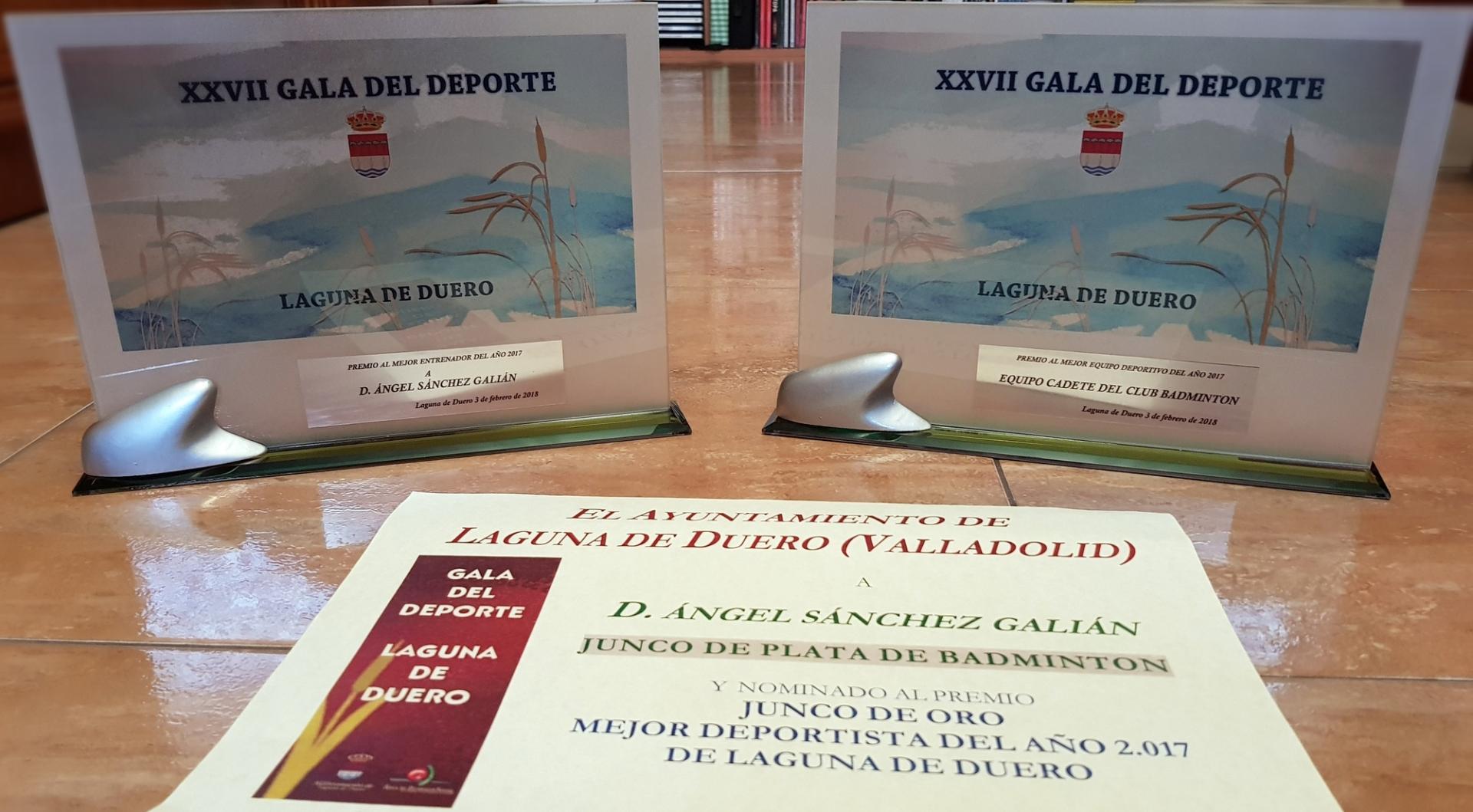 Premios gala del deporte 2017 iloveimg resized